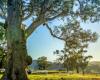 堪培拉最大的一块私人土地以360万澳元的价格被拍卖