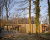 房产信息:MU建筑和Archicop的法国学校在屋顶摇摇欲坠的树木周围