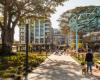 兰德威克公寓与悉尼最酷的游乐场和餐厅齐头并进