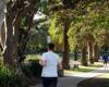 数据显示 悉尼最宜居郊区的房价已经下跌了六位数